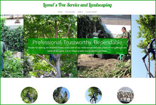 Leonel's Tree Service and Landscaping